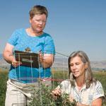 Agronomists working in field